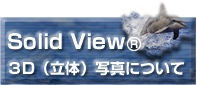 solidview